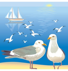 Seascape with seagulls vector image
