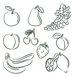fruit doodle set vector image vector image