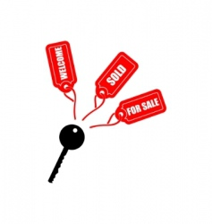 key with tags vector image vector image