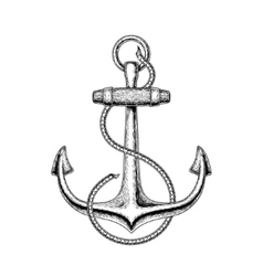 a nautical anchor vector image vector image
