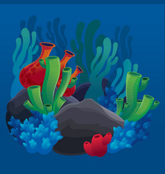 set of marine plants corals and rocks vector image