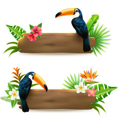 Toucan 2 Tropical Rainforest Banners vector image vector image