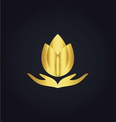 lotus flower meditation spa gold logo vector image