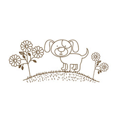 brown contour graphic of dog in hill with plants vector image