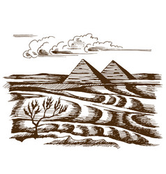egyptian pyramids in the desert vector image