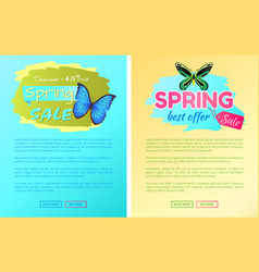 big sale spring discount offer labels butterflies vector image