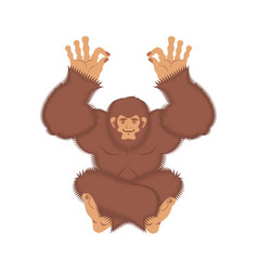 Bigfoot yoga yeti yogi abominable snowman vector