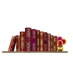 books on shelf wall sticker artistic hand-d vector image