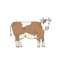 brown outline cow on white background vector image
