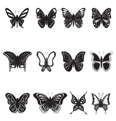 Butterflies black silhouettes on white background vector