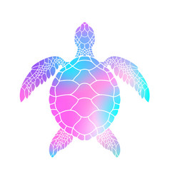 Colorful turtle vector