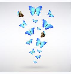 Flock blue butterflies vector