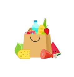 Grocery bag isolated on white vector image vector image