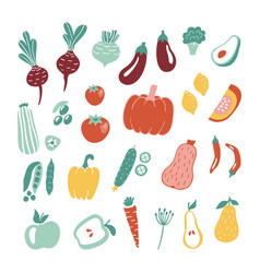hand drawn fruits and vegetables collection vector image