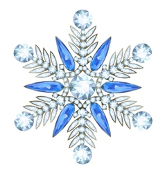 Jewelry in form of snowflake vector