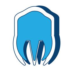 Molar icon image vector