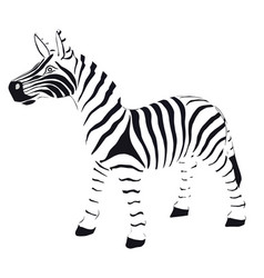 zebra in striped black and white vector image