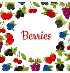 Berry and fruit poster Fruity frame design vector image