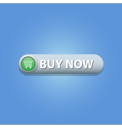 Buy Now Button vector image