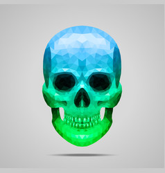 Polygonal blue green skull vector image vector image