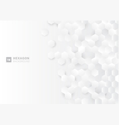 abstract paper style hexagon pattern on white vector image