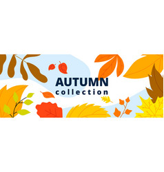 autumn leaves banner isolated leaf october fall vector image
