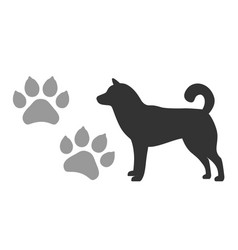 Dogs footprints and silhouette a black vector
