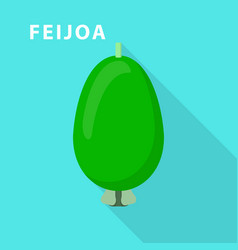 feijoa icon flat style vector image