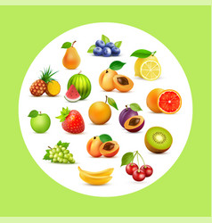 fruit set background with fruits in circle on vector image