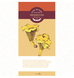 package design for dried sliced chanterelle vector image