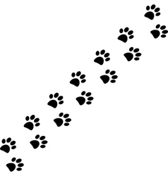 paw trail vector image