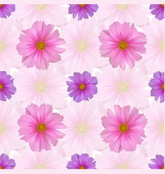seamless pattern with cosmos flower vector image