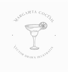 sketch margarita cocktail drawn vector image