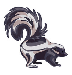 skunk icon cartoon style vector image