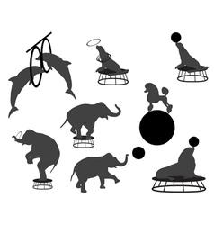 circus show vector image