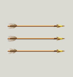 Arrow with a golden arrowhead and white plumage vector