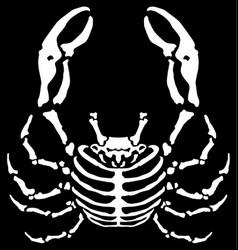 Crab skeleton cartoon vector