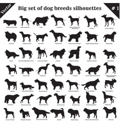 dogs silhouettes 1 vector image
