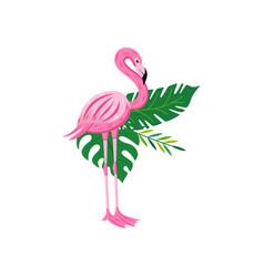 exotic pink flamingo bird on leaves flat cartoon vector image