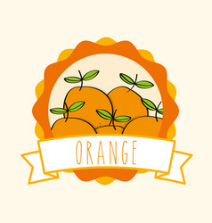 fresh orange natural fruit organic emblem design vector image
