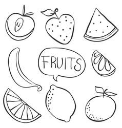 Hand draw fruit various doodles vector