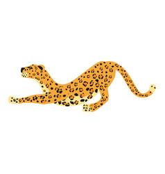 leopard smack cute trend style animal predator vector image