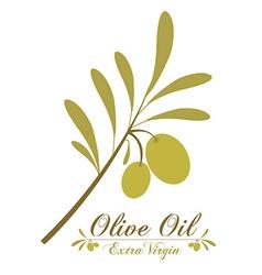 Olive oil design elements vector