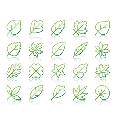 organic leaf simple color line icons set vector image