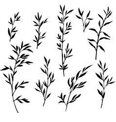 set of tree branches with leaves vector image