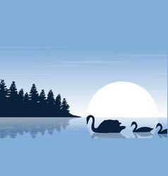 Silhouette of swan on river scenery vector