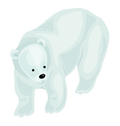 white bear icon cartoon style vector image
