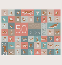 Yoga dogs poses and exercises doing clipart funny vector