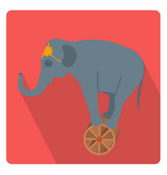 circus elephant on the wheel icon flat style with vector image
