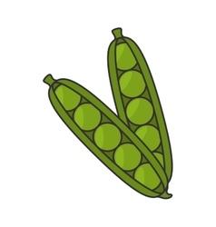 Pea pod vegetable vector